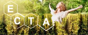 Ecta header